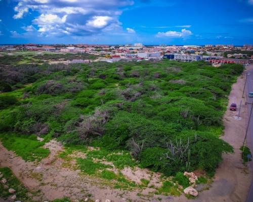 Bushiri property land